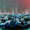 Boats in the Harbor near Monterey California