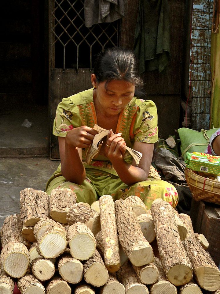 Thanaka logs for sale, Yagon - A young woman gets some reading in while waiting for people to buy her Thanaka logs, which come from a small tree grown in Upper Burma. Women cut the bark off the log, grind it on a grinding stone, and add a few drops of water to make a yellow paste, which is then applied as makeup, just as she has.