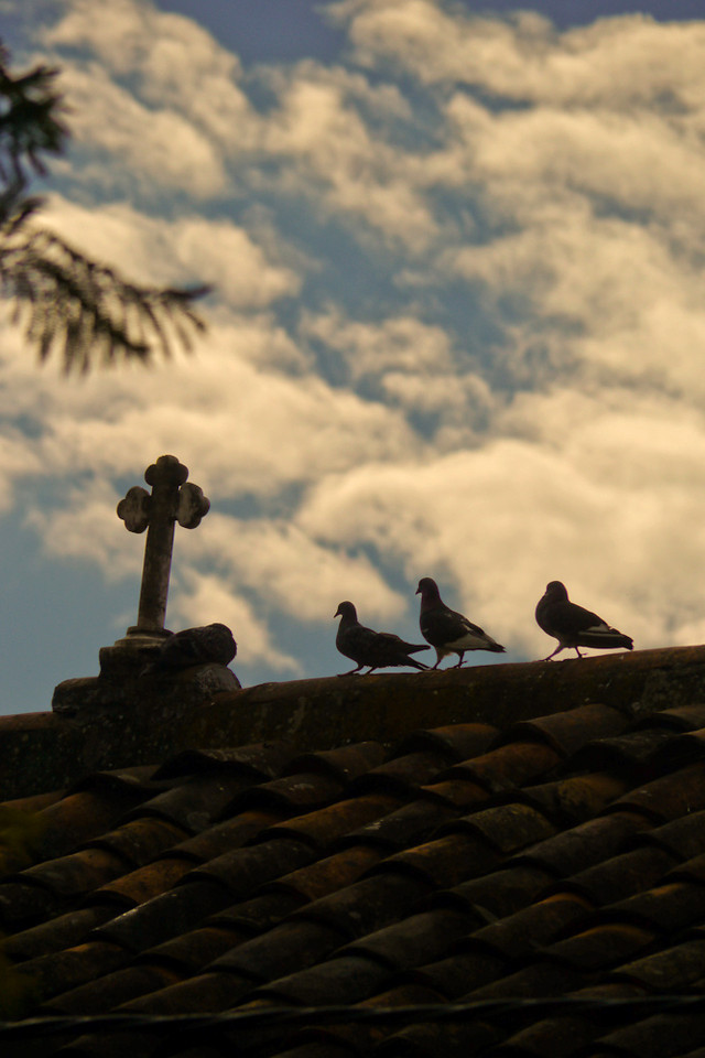 Three birds on a church, Paccha