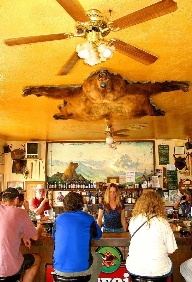 Under the Flying Bear - This Brown Bear, floating over a bar in Talkeetna, once may have weighed nearly 1500 pounds. We did not meet any live bears during the few weeks we were in Alaska, but bearskins such as this one are plentiful.