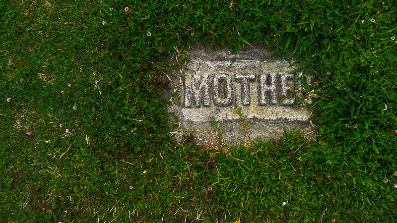Remembering mother, Cayucos, California
