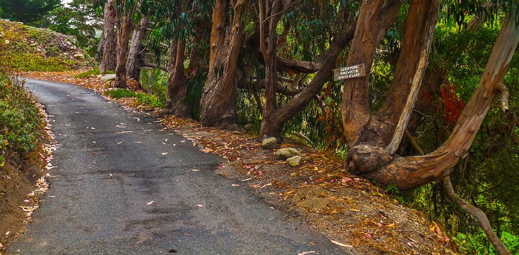 Private driveway, Carmel Highlands, California