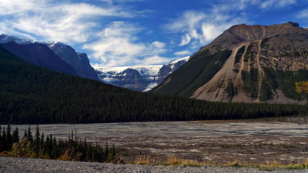 Glacier, Jasper National Park
