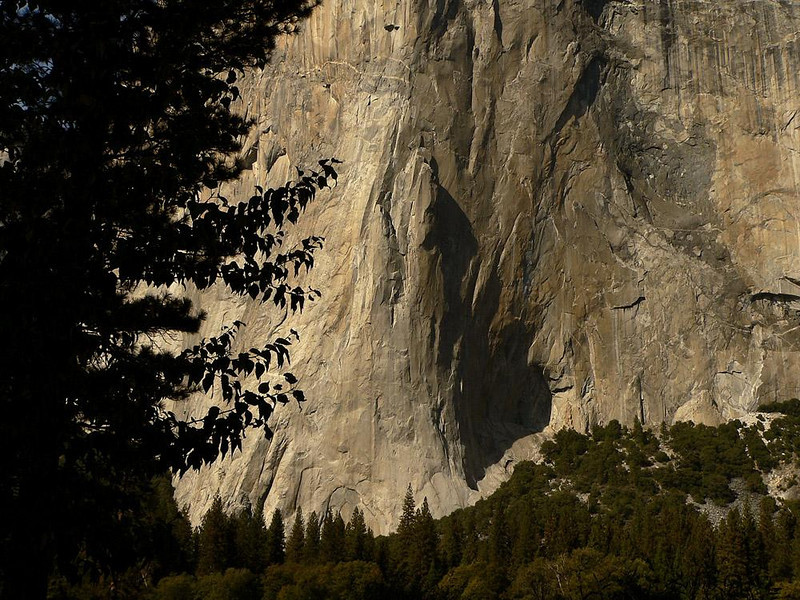 The Texture of Granite, El Capitan - A late, low angled sun brings out the texture of the sheer granite cliffs of Yosemite's towering El Capitan.