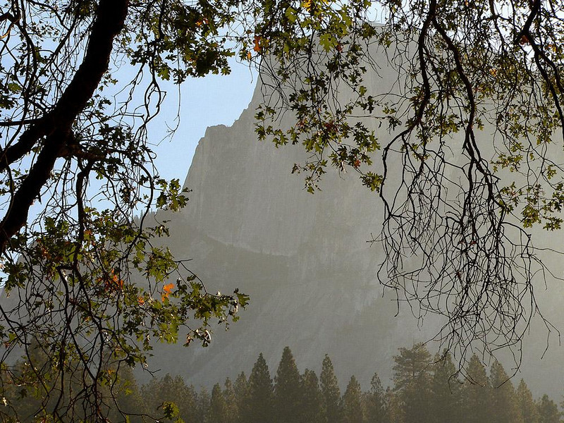 Half Dome - Perhaps Yosemite's most beloved feature is this massive granite cliff immortalized by the photographs of Ansel Adams. Half Dome soars 8,836 feet high. I photographed it here through an early morning haze caused by forest fires in the area.