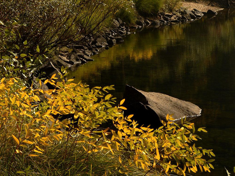 Autumn Comes to the Merced - The Yosemite Valley is one of the world's best-known examples of a glacier carved canyon. Its sheer granite walls and flat floor evolved as alpine glaciers moved through the canyon of the Merced River. Today, the Merced still winds its way through the Valley. Here's a view of its shoreline in autumn.