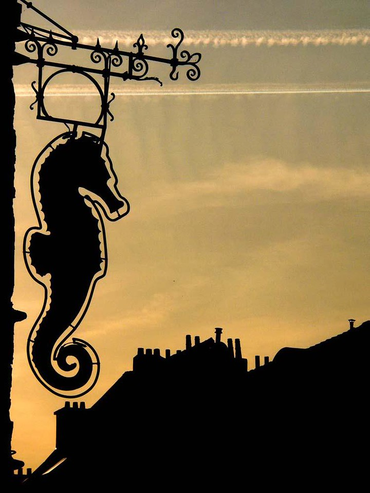 Sea Horse cafe sign - The old sign and chimneys of Brussels offer a striking contrast to the double line of jet contrails slashing through the evening sky.
