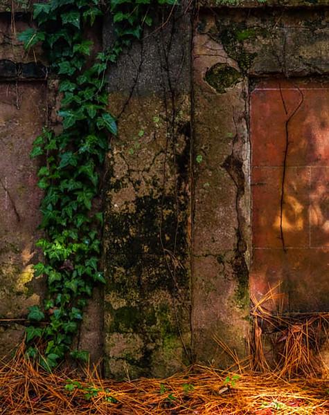 16,Old walls, Beaufort, SC