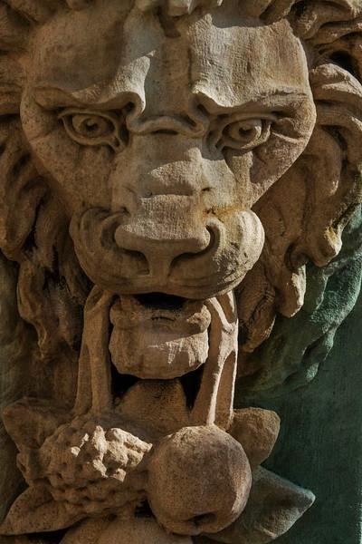 66 Lonely lion, Jacksonville, FL