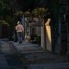 6 Streetscape, Charleston, SC