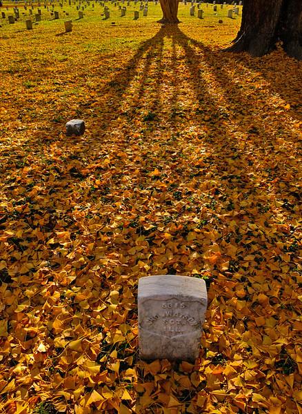 Cemetery, Vicksburg battlefield, Mississippi