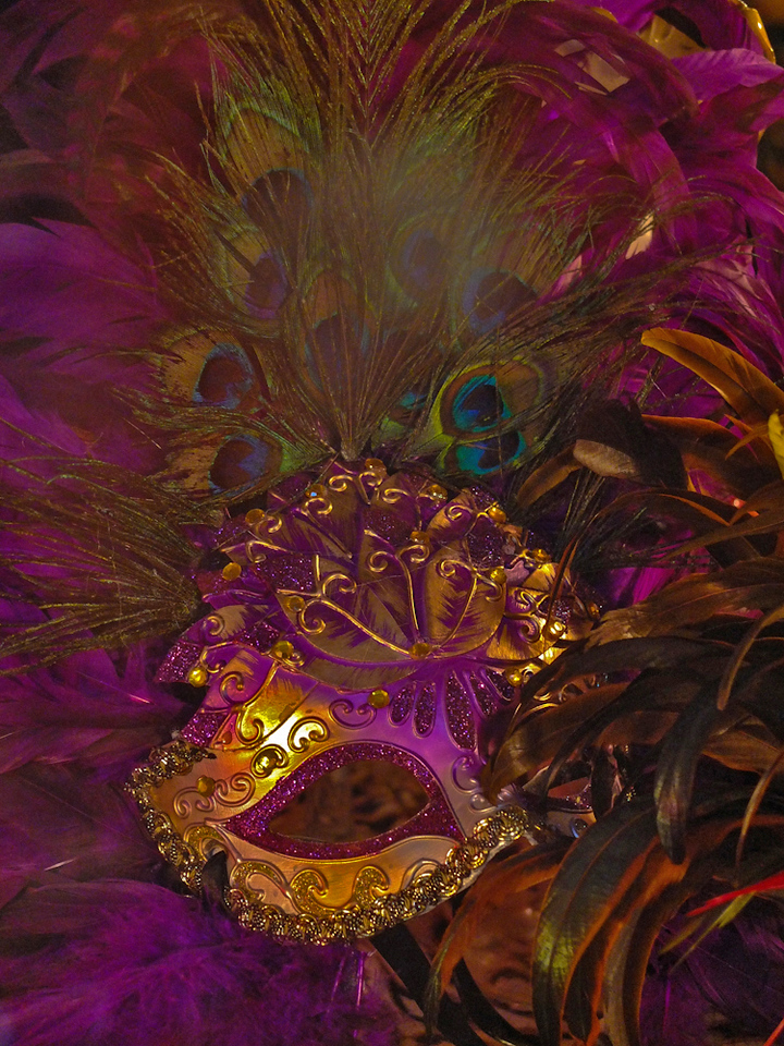 Peacock Mardi Gras Mask, New Orleans, Louisiana