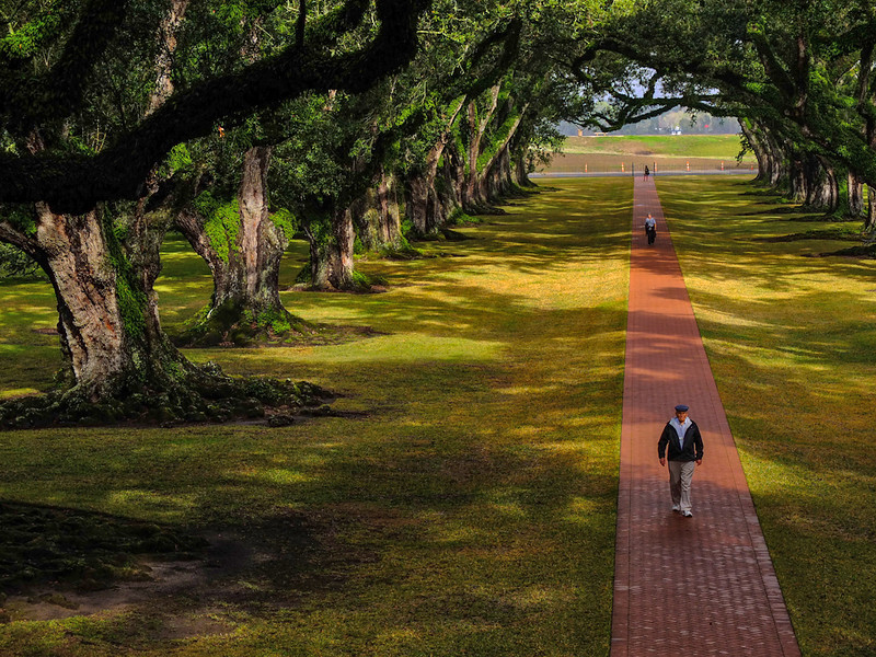 Oak Alley Plantation, Vacherie, Lousiana