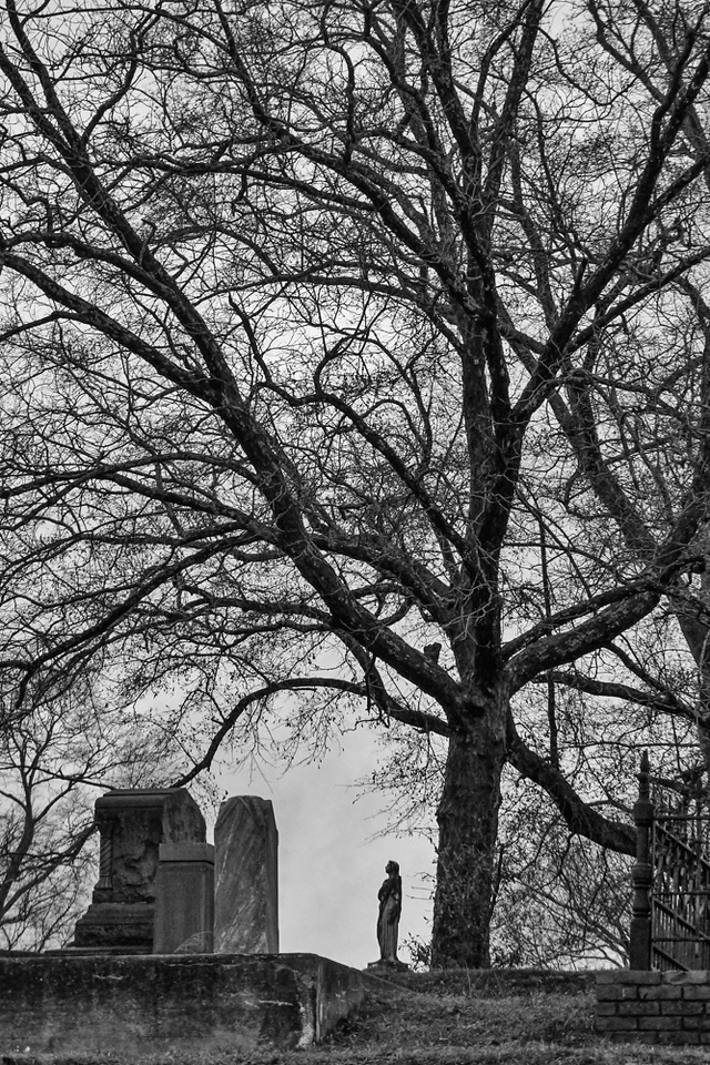 56  Rose Hill Cemetery, Macon, Georgia
