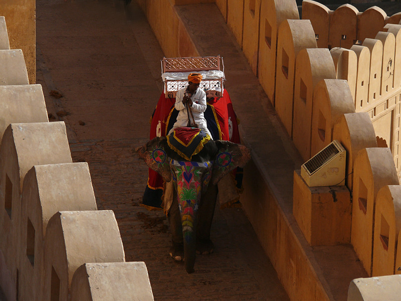 Painted elephant, Amber Fort, Jaipur