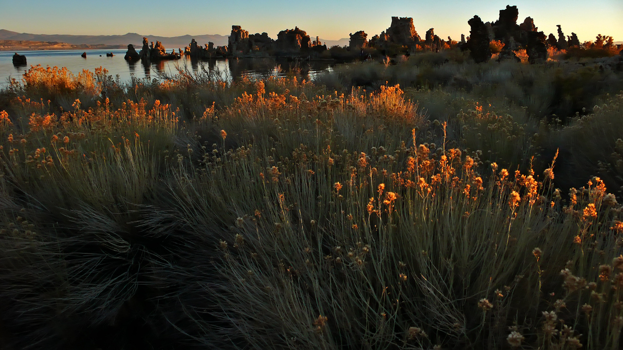 First Light, Mono Lake - Over a million years old, Mono Lake sprawls across 60 square miles. It is lined with ancient calcium carbonate towers that formed on the lake's bottom and now stand exposed as craggy sentinels, caught in transition from night to day. The soft colors of dawn add a lush atmosphere, a mood unique to this strange place.