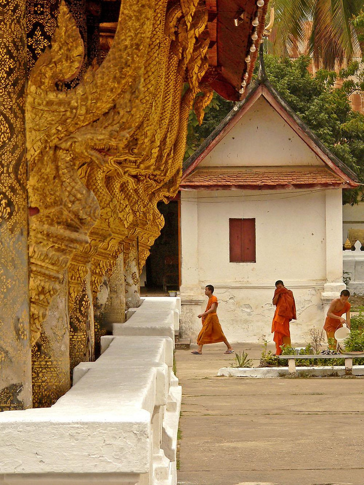 Golden Nagas at Luang Prabang - The Buddhist temples at Luang Prabang are the most beautiful in Laos. A stack of golden Nagas watch over a trio of monks as they go about their beautification chores.