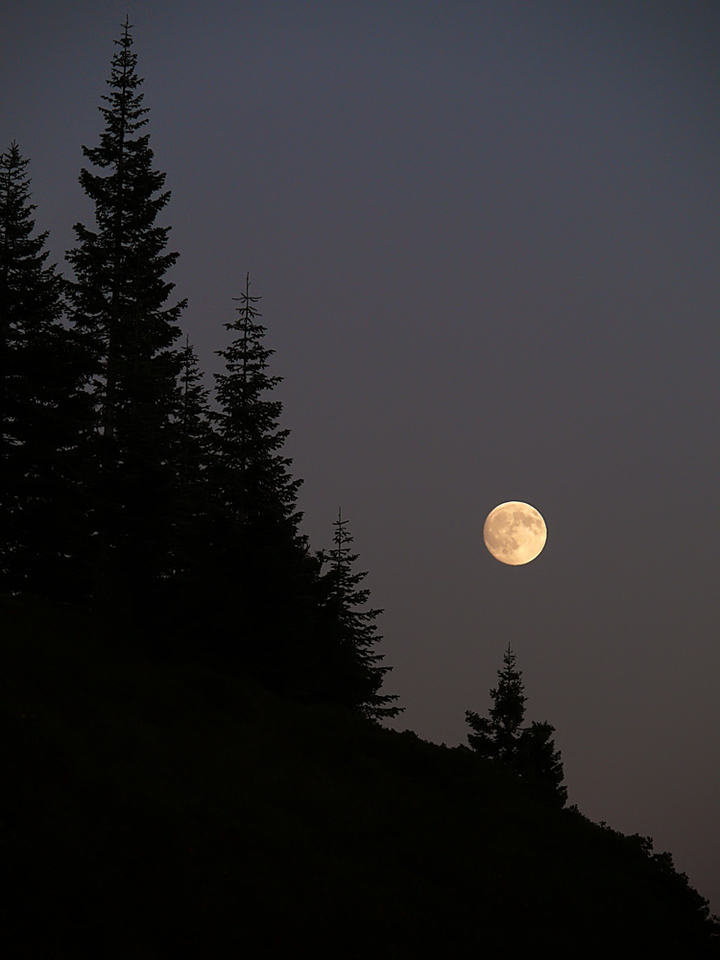 Full moon, Mount Shasta, CA