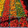 44 Fresh from the fields, Farmers Market, Imperial Beach, CA