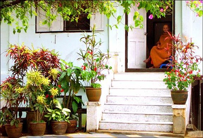 Monastery, Chiang Mai, Thailand - I was shooting the plants surrounding the stairway when I noticed a monk sitting in the darkness of the doorway. He seemed very relaxed and contemplative. A perfect glimpse of a quiet place.