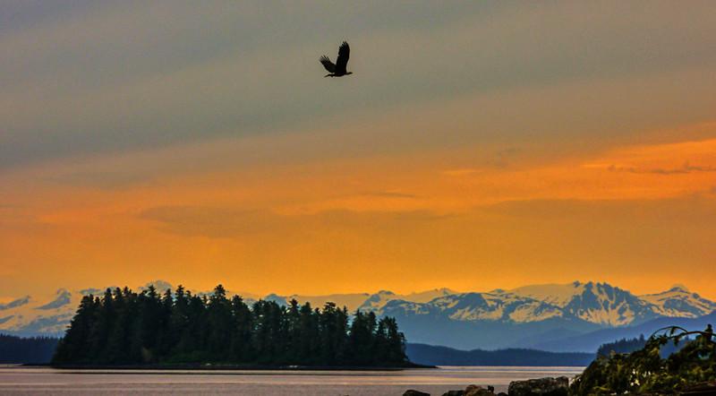 73  Final dawn, Pybus Bay, AK