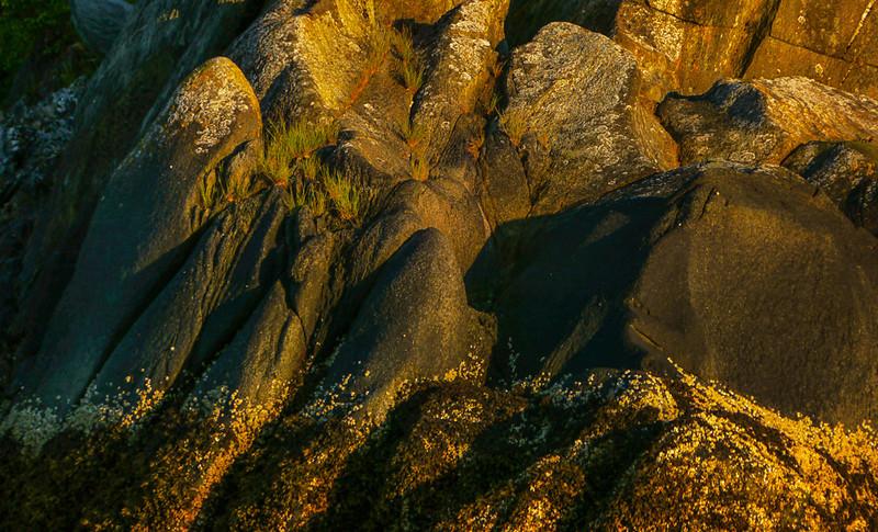38  Gilded boulders, Wood Spit, AK