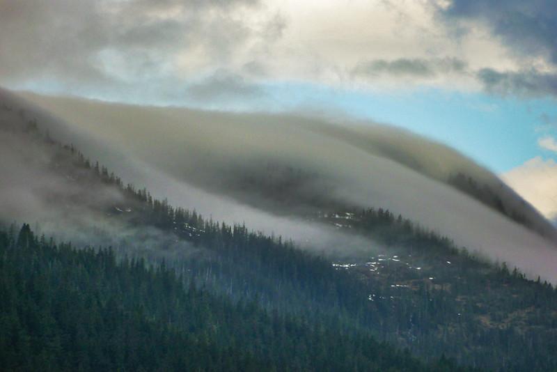 41  Fog, Endicott Arm, AK
