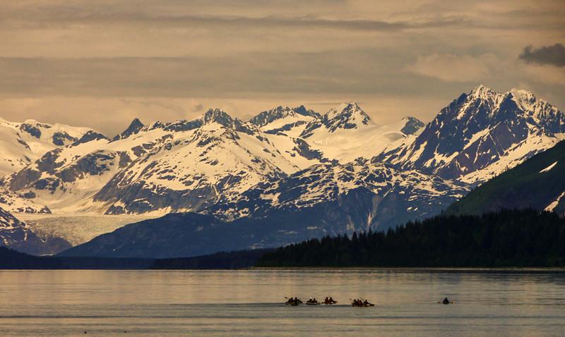 17  Kayaks, Glacier Bay, AK