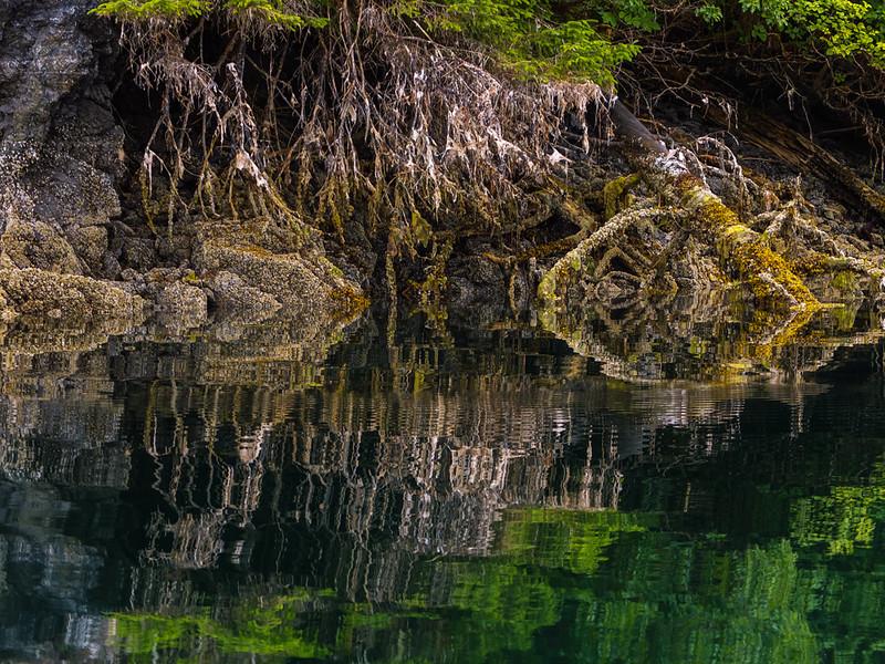 62  Reflections, Pybus Bay, AK