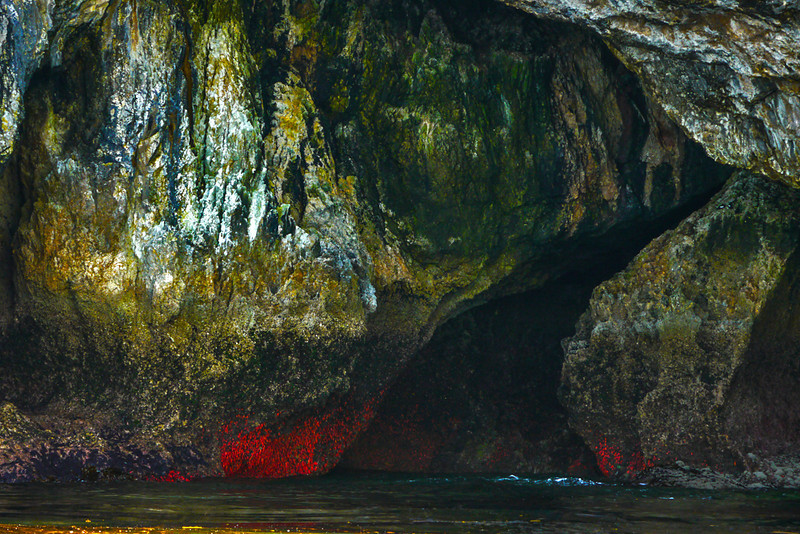 43  Crimson cave, Endicott Arm,AK