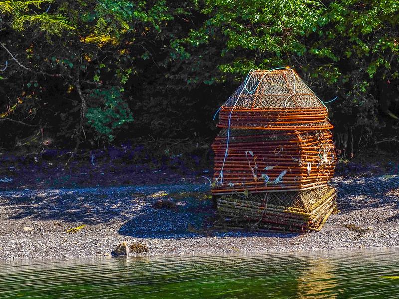 51  Crab traps, Pybus Bay, AK