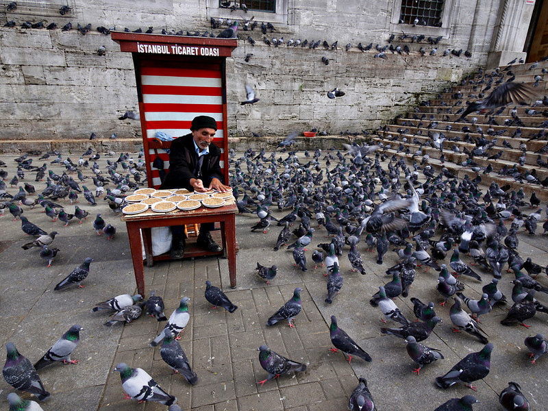 Pigeon feed, New Mosque, Istanbul