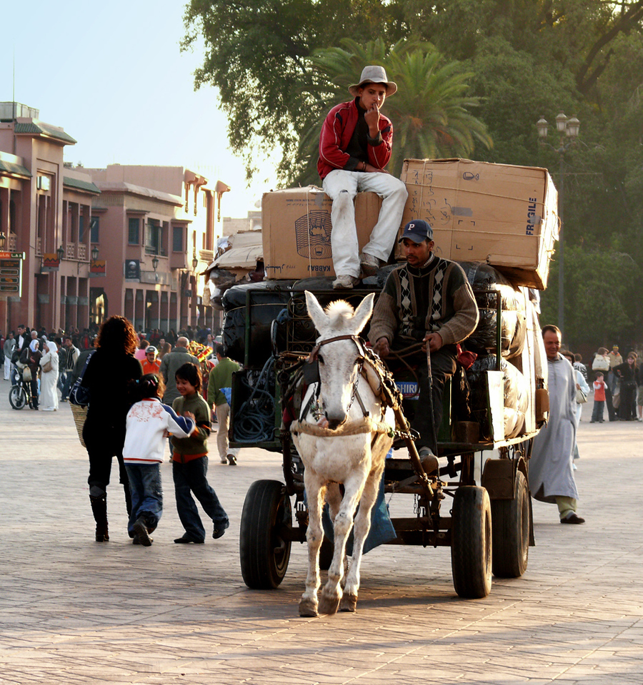 Horseplay, Place Jemaa el-Fna, Marrakesh - This square is at the heart to Marrakesh. It teems with life. I was photographing this overloaded wagon as it rumbled across the square towards me. Suddenly, two children, who had been walking behind their mother, began to spontaneously play with each other. They look as if they could be dancing, but they are really engaged in a game of push and shove behind their mother's back. They don't even acknowledge the huge wagon passing only a few feet away from them. They have their own horseplay to oonsider.