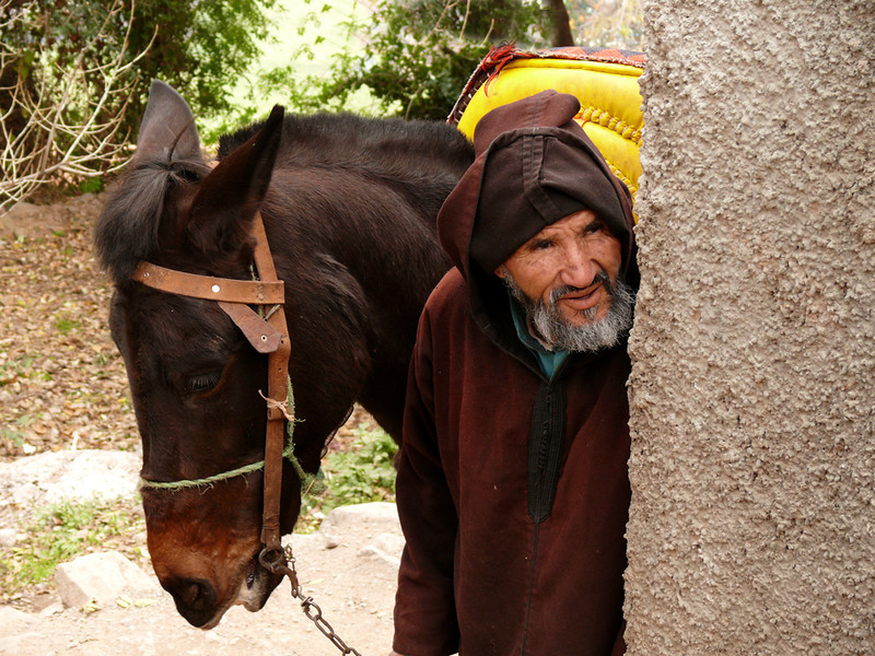 Donkey handler, Ouirgane - Ouirgane is a few hours out of Marrakesh, high in the foothills of the Atlas Mountains. Visitors can take an hour-long ride on a donkey there to visit old graveyards, and men such as this fellow takes care of them.