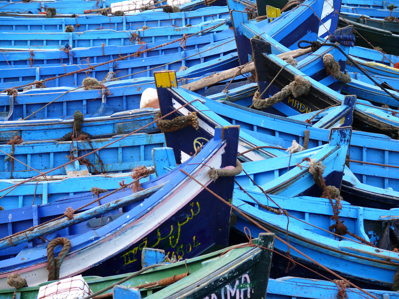 Fishing fleet, Essaouira - Essaouira, an ancient walled city on Morocco's Atlantic coast, is home to a large fishing fleet. The blue boats are moored so closely together than one could almost walk across the harbor on them.