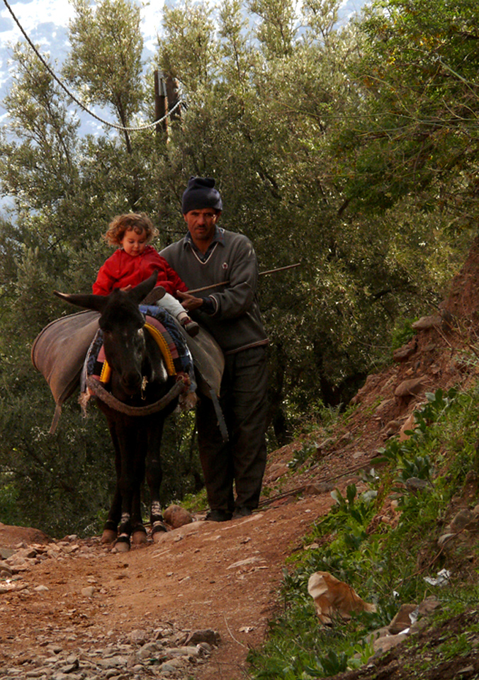 Donkey rider, Ouirgane - Visitors to Ouirgane's donkey trips come in all sizes.