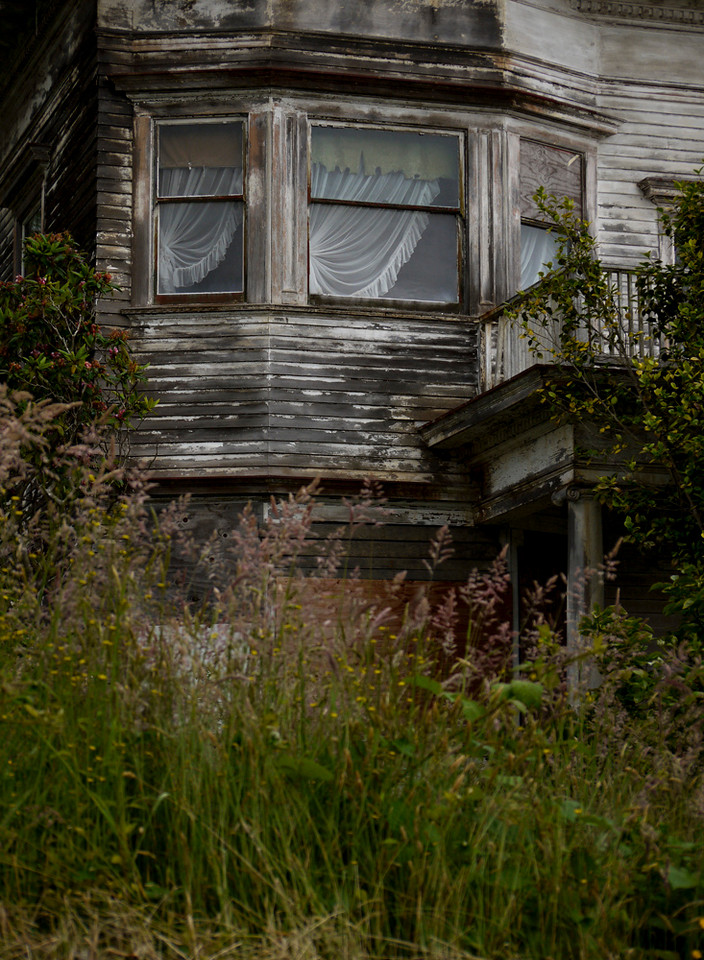 Among the weeds, Astoria, Oregon