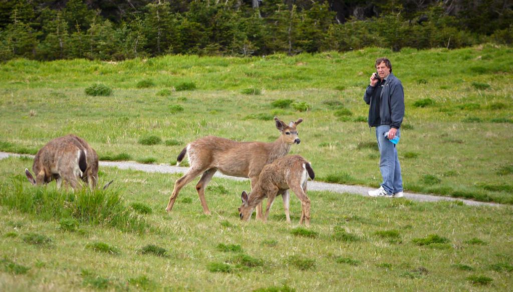 Conversation, Olympic National Park, Washington