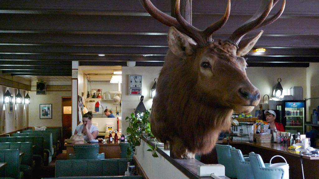 Cafe, Forks, Washington