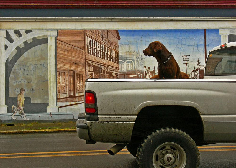 Today meets yesterday - We briefly crossed over into Washington on the way to Oregon's coast. In the village of Iwaco, I saw this dog gazing at the figure of a child in a historical mural. The truck it was riding in stopped just long enough for me to make this photograph.