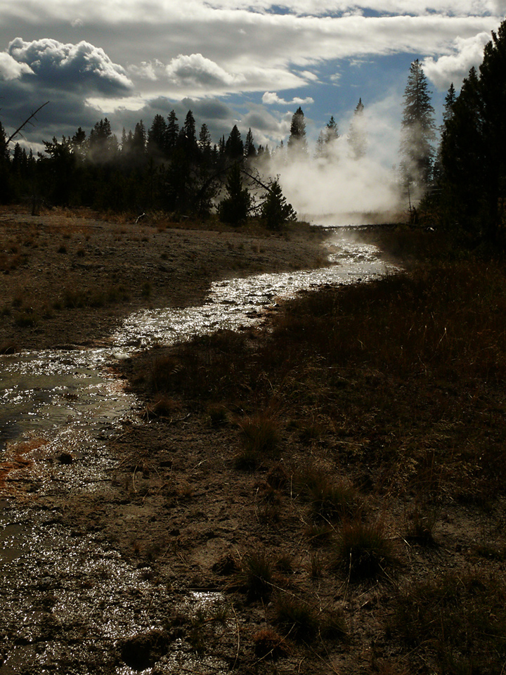 Thermal pool, Yellowstone, WY