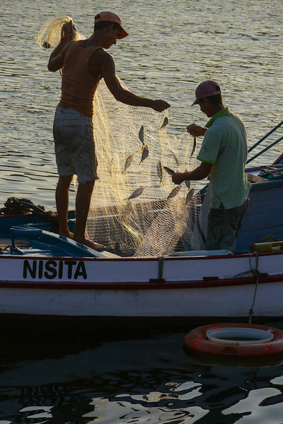 Morning catch, Havana