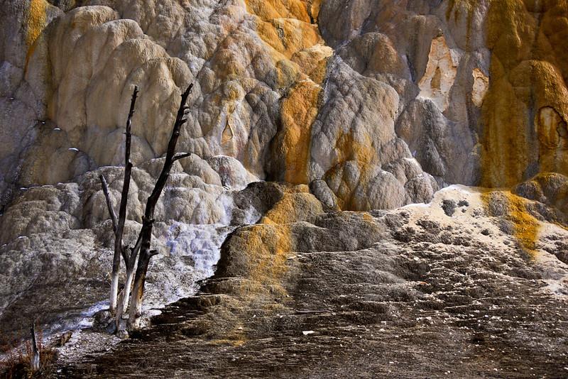 Orange Spring Mound, Mammoth Hot Springs