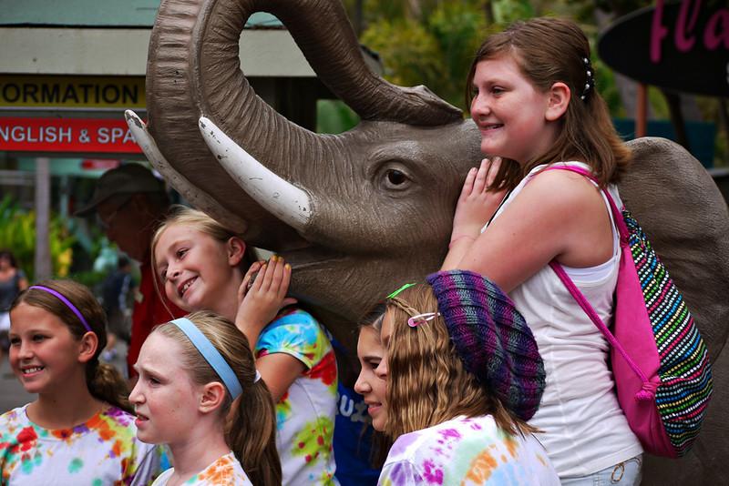 Photo op, San Diego Zoo