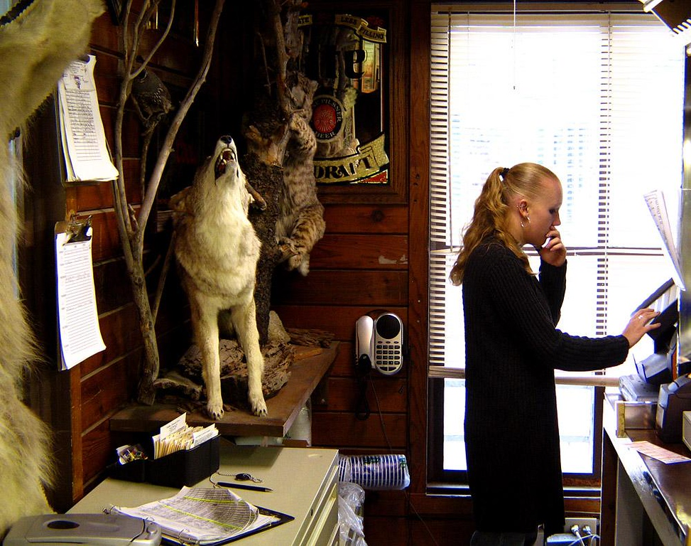 Silent Howl, Walker - This clerk is so involved in keeping this small shop running in the tiny town of Walker, California, that she no longer notices those silent howls coming from that stuffed coyote just behind her.