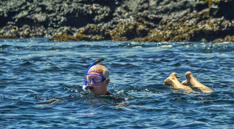 Snorkeling, Elizabeth Bay, Isabela Island, The Galapagos
