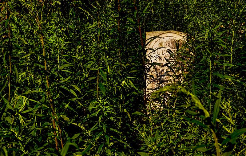 19  Forgotten, Cazenovia, NY