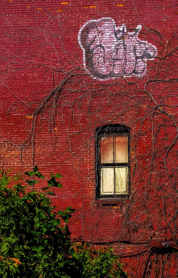 13  Allen Street, Buffalo, NY