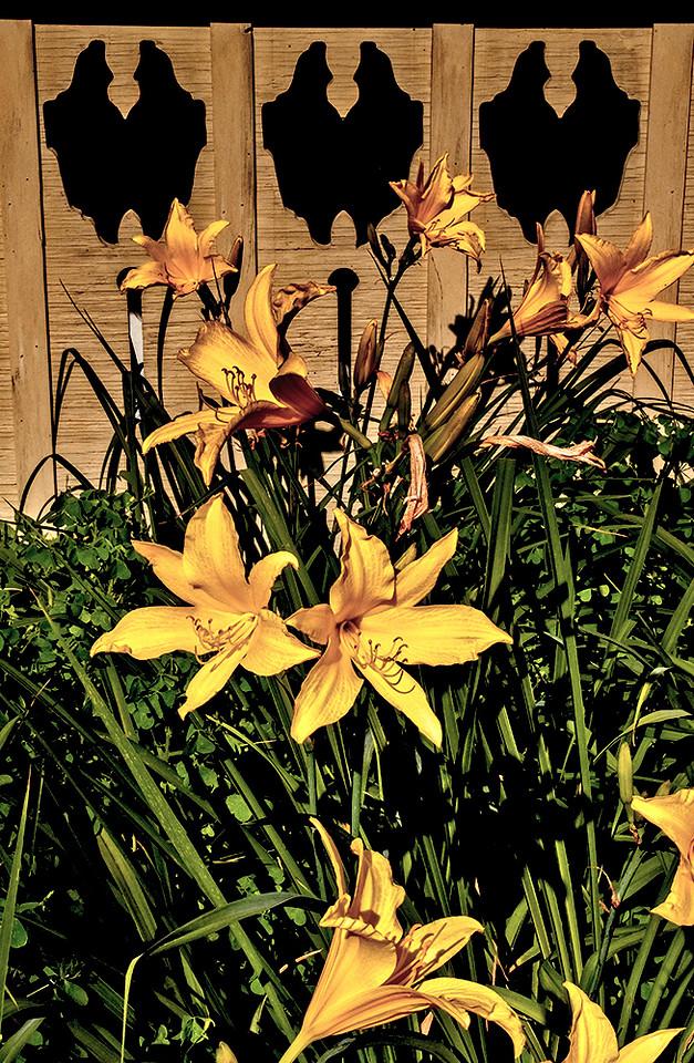 47  Plantings, Chautauqua, NY