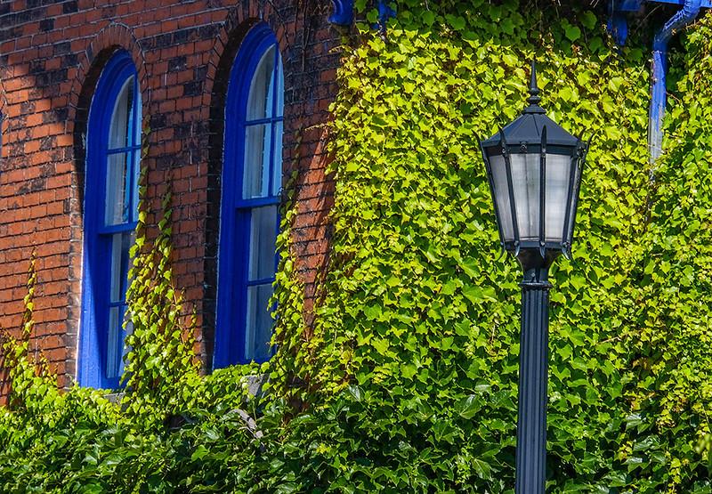 14  Ivy on Allen Street, Buffalo, NY